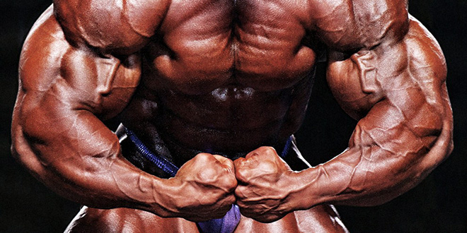 Mr. Olympia 2013 – Phil Heath