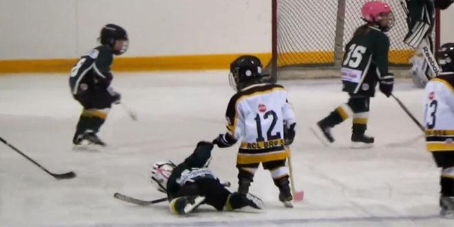 Hokej pomoc