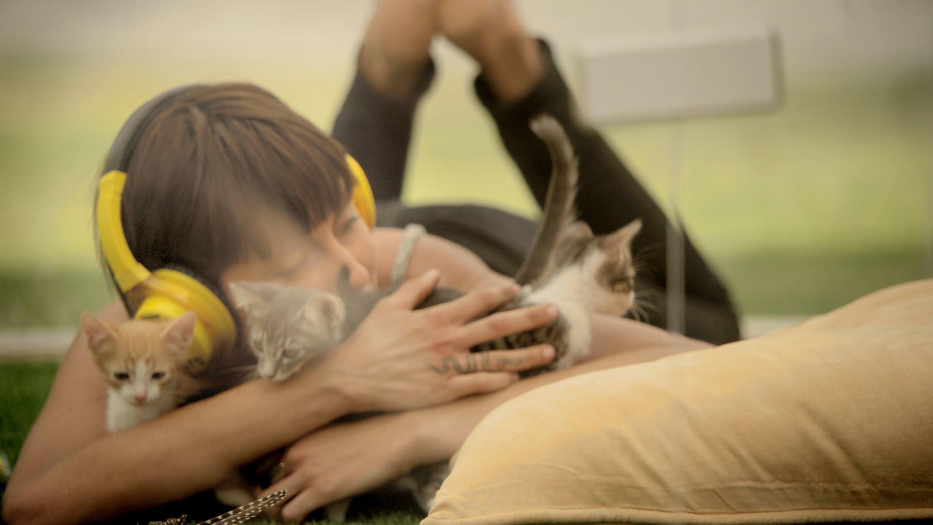 Terapie koťaty – to chceš!