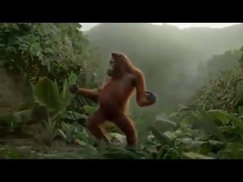 Máme tu pátek! Ideální čas na opičí tance!