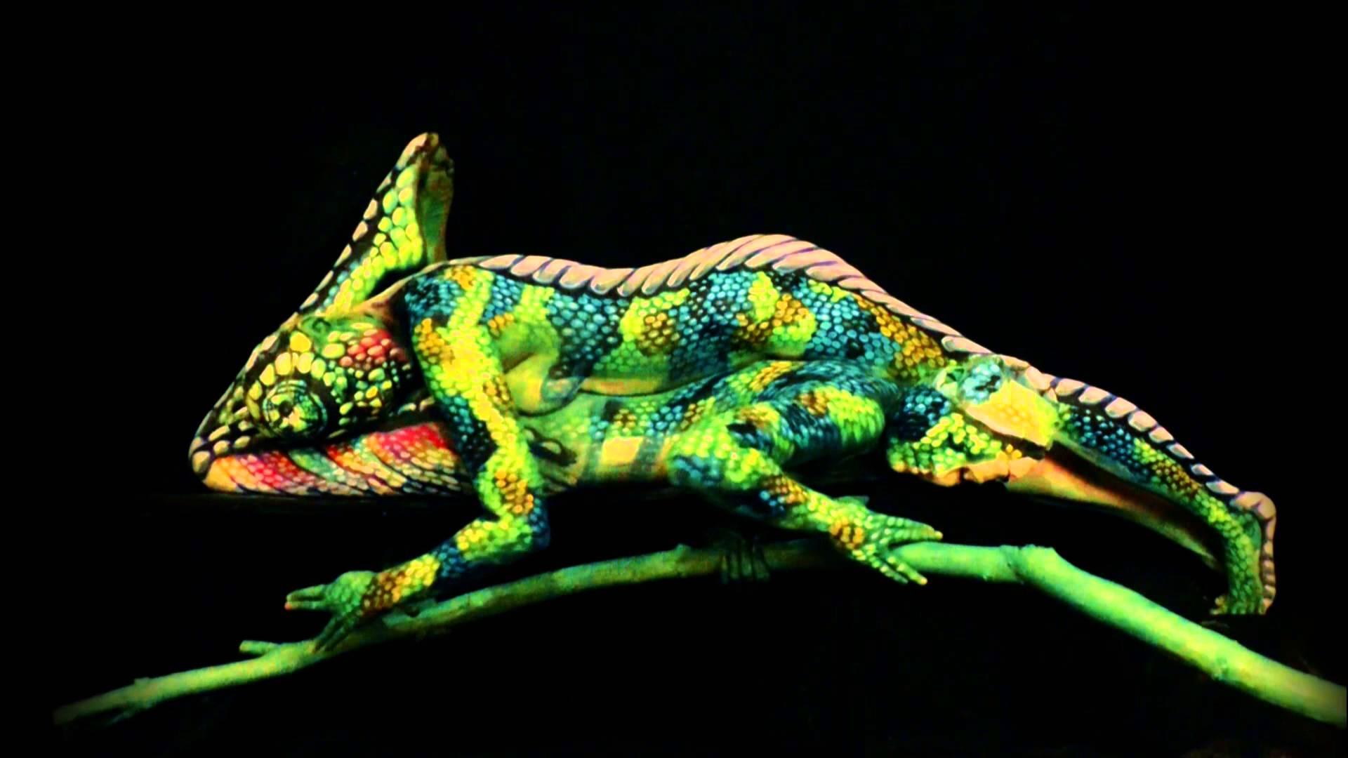 Takového chameleona jste TUTOVĚ ještě neviděli!