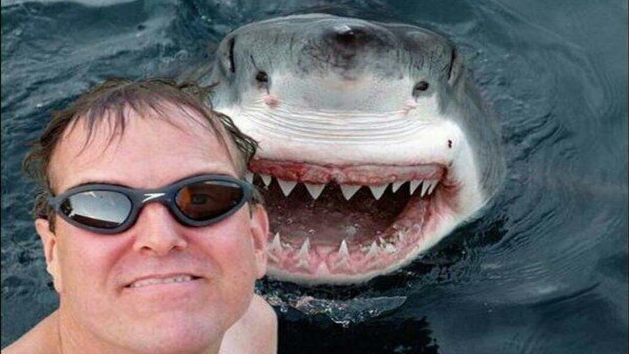 TOP 25 nejvíce nebezpečných Selfies!