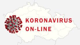 koronavirus-online